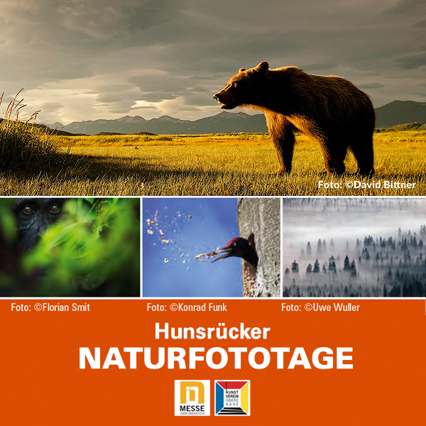 16. Hunsrücker Naturfototage 15. – 17. Feb. 2019