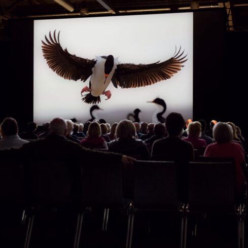 Presse – Naturfototage Hunsrück 2021