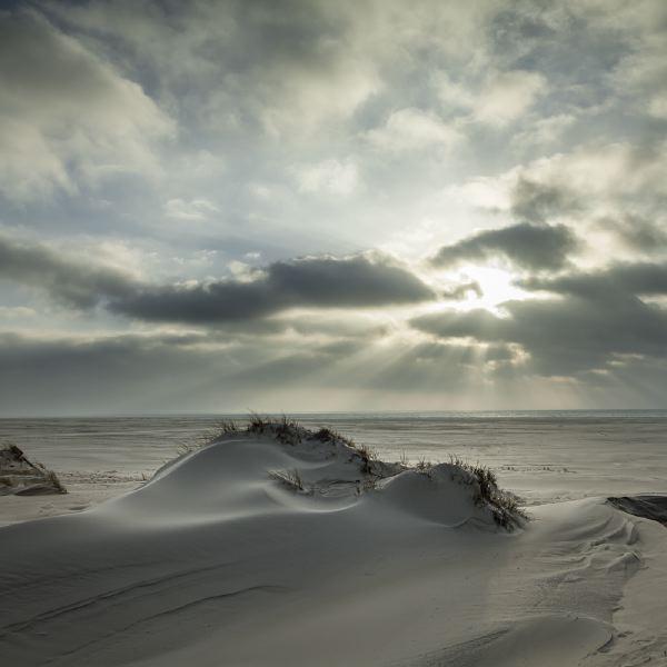 © Uwe Wuller - Die Ungleichen Schwestern - Naturfotografie Auf Den Nordseeinseln Sylt Und Amrum