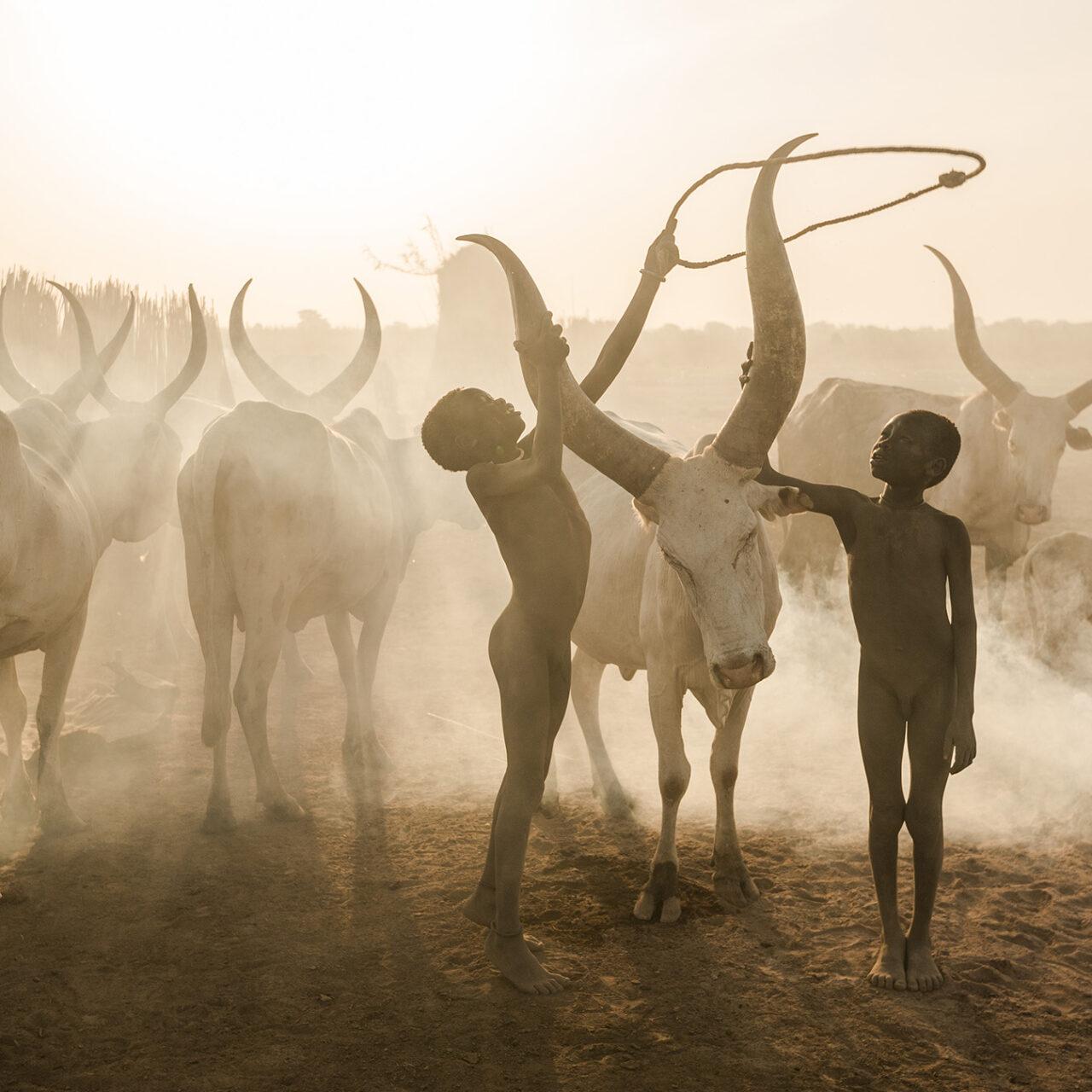 03 - © Markus Mauthe - Kinder Der Mundari Kümmern Sich Um Die Rinder Im Sudan